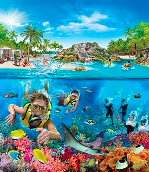 Copyright Discovery Cove