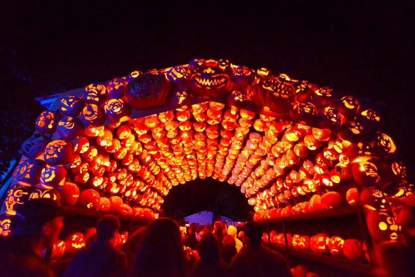 Jack O Lantern Blaze Brings Unique Pumpkin Sculptures To