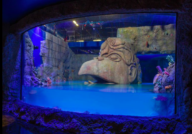 Sea Life Aquarium In Orlando Fills Tank To Prepare For May