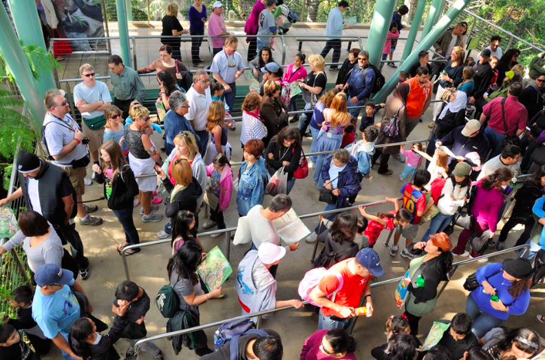How Much Do Queues Affect Your Theme Park Experience