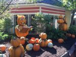 Dollywood Prepares for Fall 2016