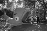 Theme Park History Preserved in Images of America – Children's Fairyland