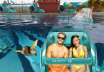 Could The Aquaticar Be The Future of Water Parks?