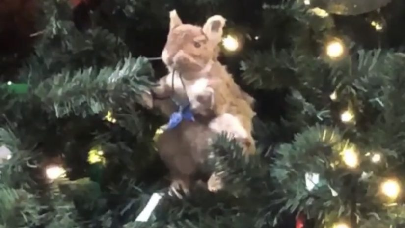 Universal Studios Christmas.Why Is There An Animated Squirrel In The Universal Studios